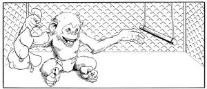 strength-monsters-monkey-panel-1